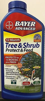Bayer Advanced 12-Month Tree & Shrub Protect & Feed Liquid Concentrate 32-ounces