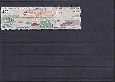 056199 Vögel Birds ... SPM Saint Pierre Et Miquelon 554-55 ** MNH Year 1987