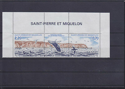056200 Vögel Birds ... SPM Saint Pierre Et Miquelon 566-67 ** MNH Year 1988