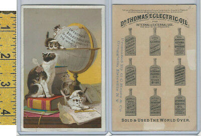 Victorian Card, 1890's, Dr Thomas Oil, Moore Druggist, Erieville NY, Cats, Globe