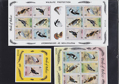 056218 Vögel Birds Belize 487-92 + Block 18/19 ** MNH Year 1980