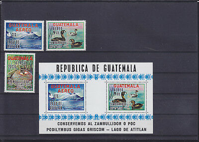 056230 Vögel Birds Guatemala 886-88 + Block 10 ** MNH Year 1970