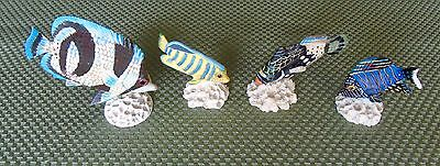 Tropical Fish Lot Of (4) Beautuful  Tropical Fish Mounted On Real Coral