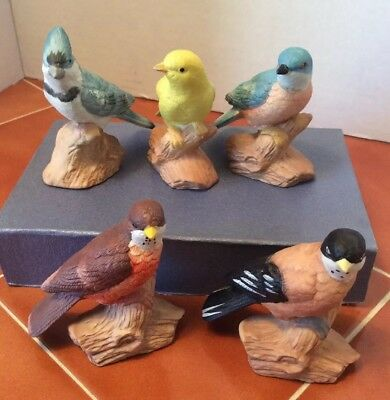 Set Of 5 Vintage Bisque Porcelaine Bird Figurines By Whitney With Labels Nice!