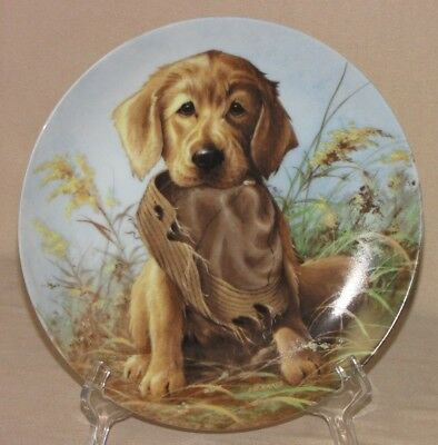 "Vintage Knowles ""Caught in the Act"" – The Golden Retriever Lynn Kaatz Porcelain"