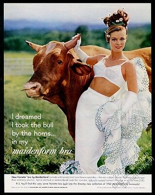 1962 Maidenform Bra woman and shorthorn cattle cow bull photo vintage print ad