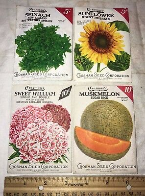 Antique 4X Unopened Crosman Seed Packet Vintage Flower Garden Country Store Farm