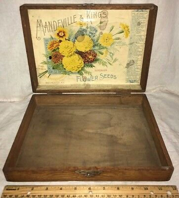 Antique Mandeville King French Marigold Flower Seed Wood Garden Box Rochester Ny