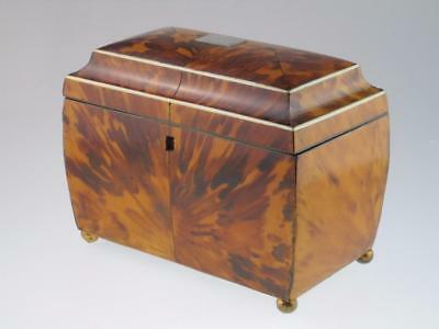 Large Antique 19th Century Faux Tortoiseshell Tea Caddy Circa 1820