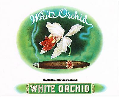 Authentic Cigar Box Label Vintage White Orchid Ghostly Smoke Classic Typography