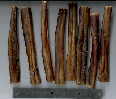 "BULLY sticks 4""-5""-12 cm Heavy weight bullies 25-30 grams"