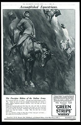 1924 Green Stripe Scotch whisky Italy cavalry horse art BIG UK vintage print ad