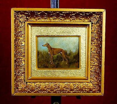 Exquisite Early C20th English School Oil on Board Portrait of a TGreyhound