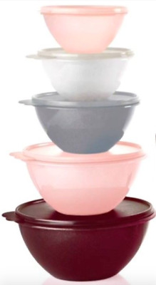 Tupperware Wonderlier Mixing Bowls 5-pc Set Starlight Pink Silver White Pastels