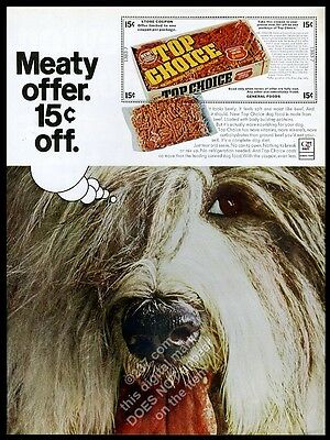 1966 Old English Sheepdog photo Top Choice burger dog food vintage print ad
