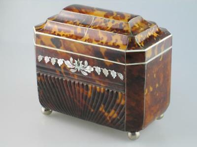 Unique Large 19th Century Press Faux Tortoiseshell Tea Caddy Circa 1820