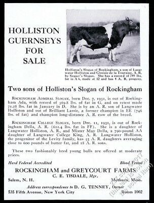 1932 Guernsey champion cow photo Holliston cattle breeder vintage print ad