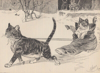 Cat Given Kitten Ride In Shoe Pussy's First Sleigh Ride Antique Cat Print 1883
