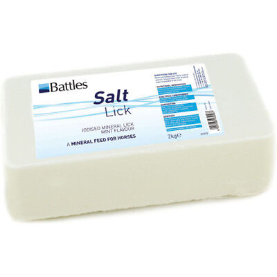 Battles Salt Unisex Stable And Yard Lick - Mint All Sizes