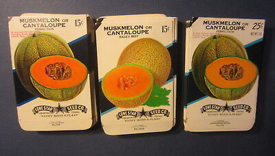 Wholesale Lot of 150 Old Vintage - CANTALOUPE / Melon - SEED PACKETS - EMPTY
