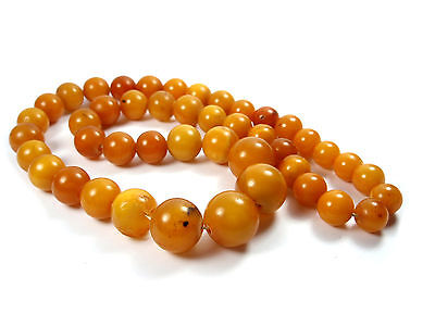 Natural Genuine Baltic Amber BUTTERSCOTCH EGG Yolk Necklace Beads 40,50 g 老琥珀