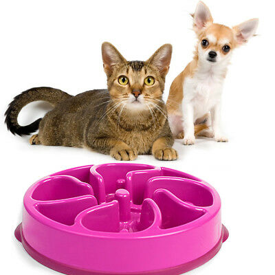 Pet Puzzle Bowl Anti Choke Digestion Slow Eating Feeder Dog Cat Interactive Dish
