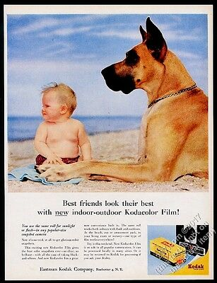 1956 Great Dane photo and baby at beach Kodak Kodacolor film vintage print ad