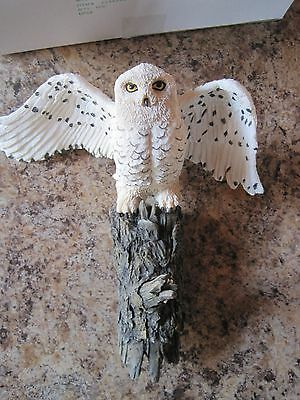 WALL COAT HAT JACKET HOOK HANG UP SNOWY OWL BIRD Wild Wings Animal HOME