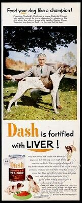 1957 pointer photo champion dog Dash Dog Food vintage print ad