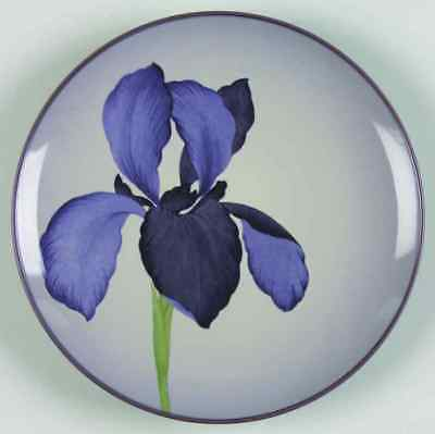 Noritake COLORWAVE-PURPLE Iris Accent Salad Plate 6463400