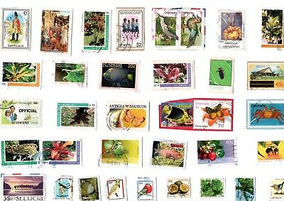 A  Fresh New Selection Of Kiloware Stamps From Saint Kitts, Saint Vincent Etc