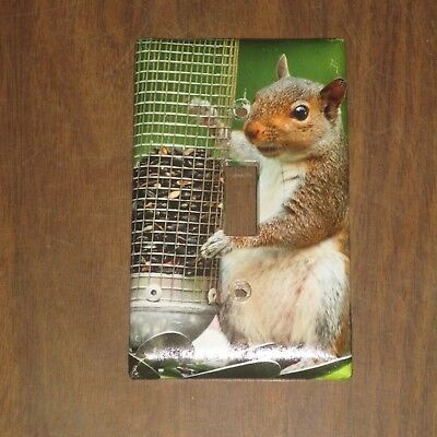 ADVICE FROM A SQUIRREL wisdom STONE COASTER w// EASEL Novelty SIGN Animal USA