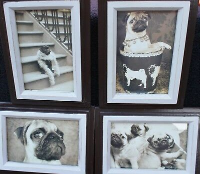 "4 PUG SHOTS by Jim Dratfield PORTRAIT PHOTOS ~  6"" x 8"" Wood Framed"