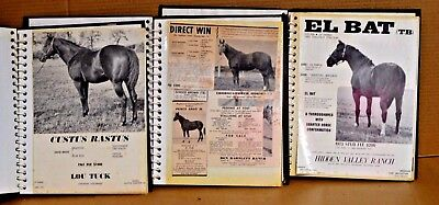1960s/70s Rare Lot (80) Ad Sheets of Horse Photos With Profiles, Stud Fees Etc!