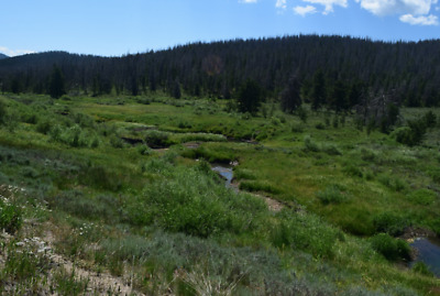 20 Acre Unpatented Placer Gold Mining Claim,  Grand Lake Mining District