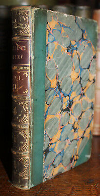 1844 English Botany Coloured Figures of British Plants SOWERBY 187 Coloured Pl