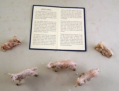 Fontanini Collection Pack of 5 Hand Painted Nativity Scene Sheep W/ Story Card