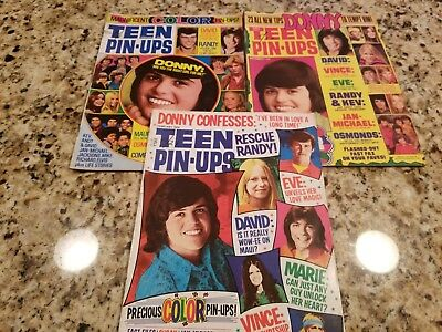 Vintage Lot Of 3 Teen Pin Ups Magazine 1974-1975 Donny Osmond/david Cassidy