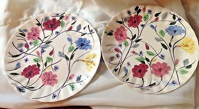 "2 Vintage Blue Ridge Southern Pottery Hand Painted Chintz 10"" Dinner Plates"