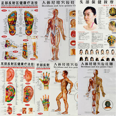 7pc/Set English Acupuncture Meridian Acupressure Points Posters Chart Wall Map
