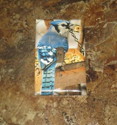 Classic Blue Jay Bluejay Wild Bird Light Switch Cover Plate #7