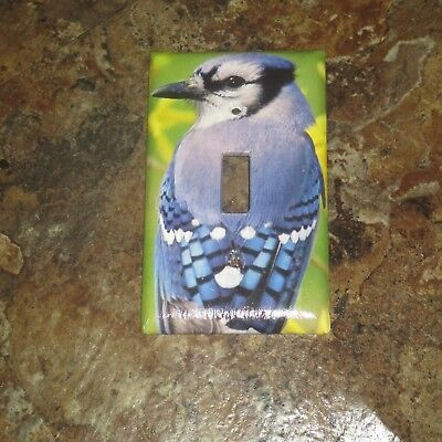 Classic Blue Jay Bluejay Wild Bird Light Switch Cover Plate #8