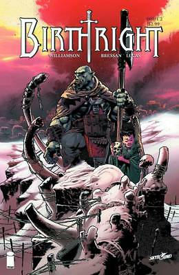 Birthright #2 Andrei Bressan Second Printing Cover Image Comic Book NM ja