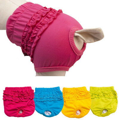 Cute Pet Cat Dog Panty Brief Bitch In Season Sanitary Pants For Girl Female Dogs