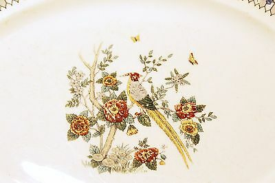 """SYRACUSE CHINA Somerset Bird Design Pattern O.P. Co. Copyrighted 1919 14"""" Oval"""