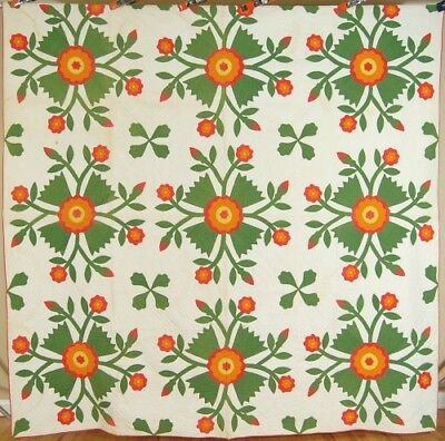SPECTACULAR Vintage 1850's Red Cheddar & Green Whig Rose Applique Antique Quilt!