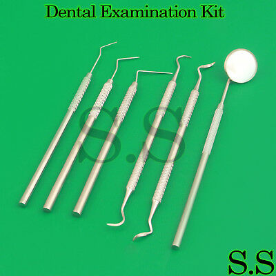 6 Pcs Dental Examination Kit Hygiene Cleaning Tooth Tatar Remover Student Set