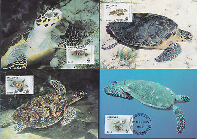 052872 WWF Schildkröten Turtles Maldives Maximum Card ´s