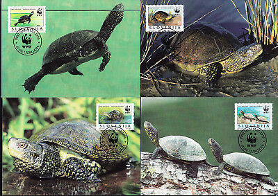 053193 WWF Schildkröten Turtles Slovenija Maximum Card ´s