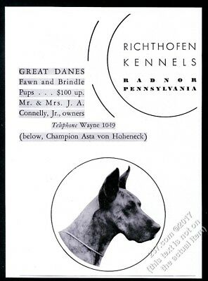 1932 Great Dane photo champion dog breeder Richthofen Kennels vintage print ad